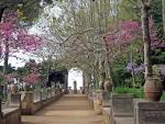 Cimbrone Garden
